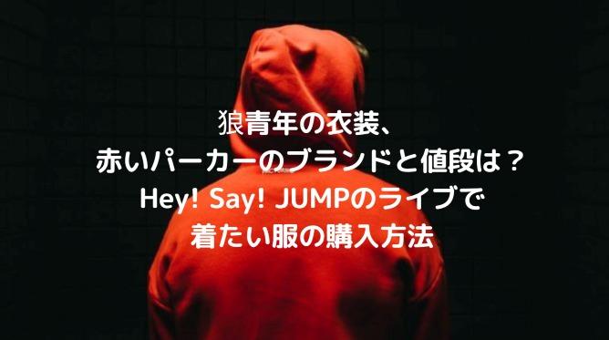 狼青年の衣装、赤いパーカーのブランドと値段は?Hey! Say! JUMPのライブで着たい服の購入方法